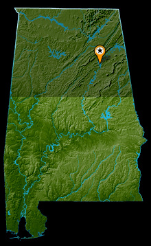Neely Henry Lake Map