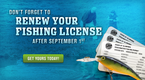 Renew your Fishing License