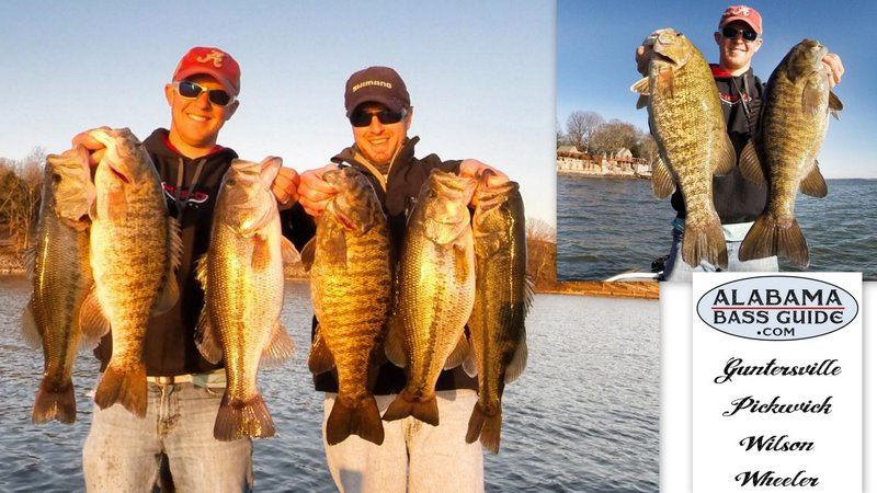 Alabama bass guide wilson lake fishing report alabama for Wilson river fishing report