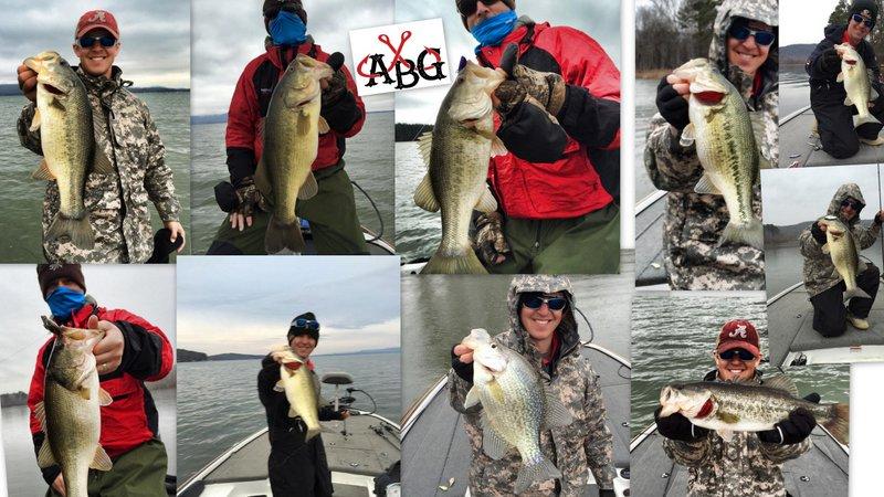 Alabama bass guide lake guntersville fishing report for Alabama bass fishing reports