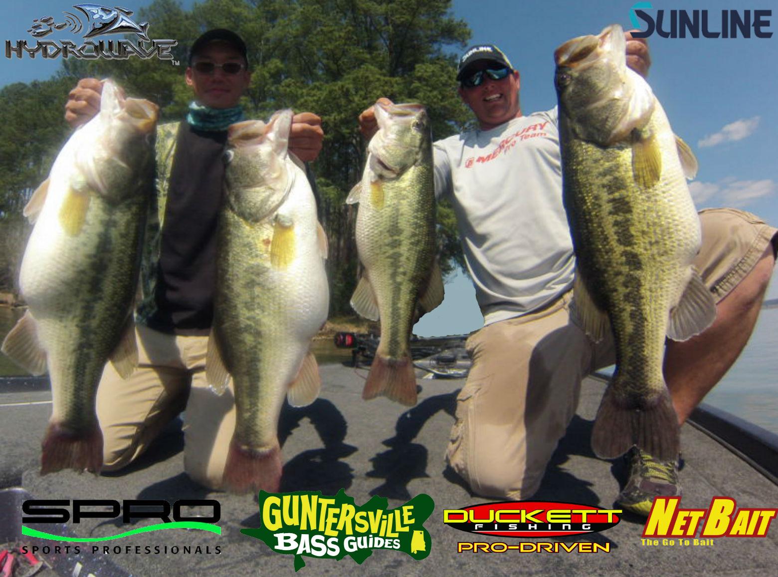 lake guntersville fishing report Guntersville Bass Guides: Lake Guntersville Bass Fishing Report ...