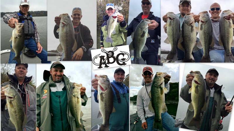 Alabama bass guide pickwick lake swimbaits alabama bass for Pickwick lake fishing report